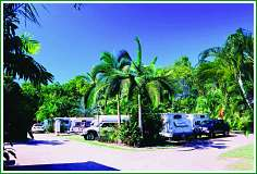 Tropical Hibiscus Caravan Park - Dalby Accommodation