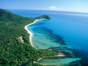 Cape Tribulation Camping - Dalby Accommodation