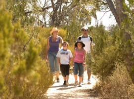 Long Island Caravan Park Cabins - Dalby Accommodation