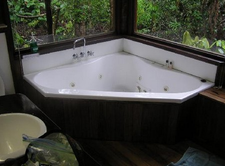 The Canopy Rainforest Tree Houses and Wildlife Sanctuary - Dalby Accommodation