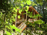 Rivers Edge Rainforest Retreat - Dalby Accommodation