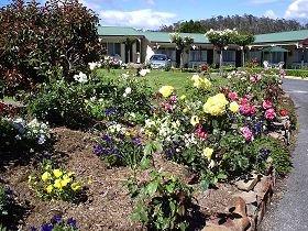 Wintersun Gardens Motel - Dalby Accommodation