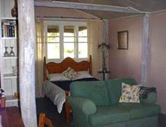Bunnyconnellen Olive Grove and Vineyard - Dalby Accommodation