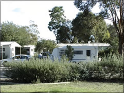 Banksia Tourist Park - Dalby Accommodation