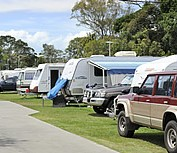 Beachmere Lions Caravan Park - Dalby Accommodation