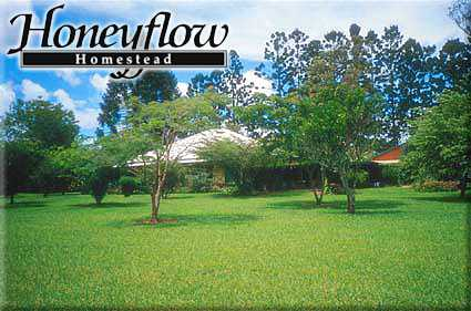 Honeyflow Homestead - Dalby Accommodation