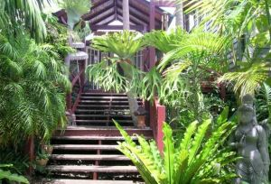 Maleny Tropical Retreat - Dalby Accommodation