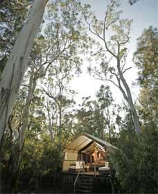 Paperbark Camp - Dalby Accommodation