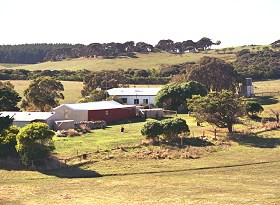 Sun Valley Eco Farm - Dalby Accommodation