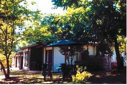 Forest Lodge - Dalby Accommodation