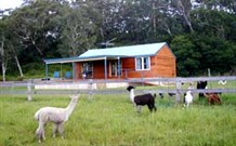 Moorallie Cottage Farm Stay - Dalby Accommodation