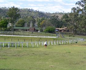 Kellarni Downs Farmstay-Scenic Rim - Dalby Accommodation