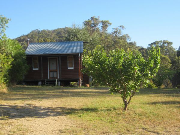 Peach Tree Cabin - Dalby Accommodation