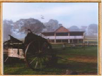 Megalong Valley Farm - Dalby Accommodation