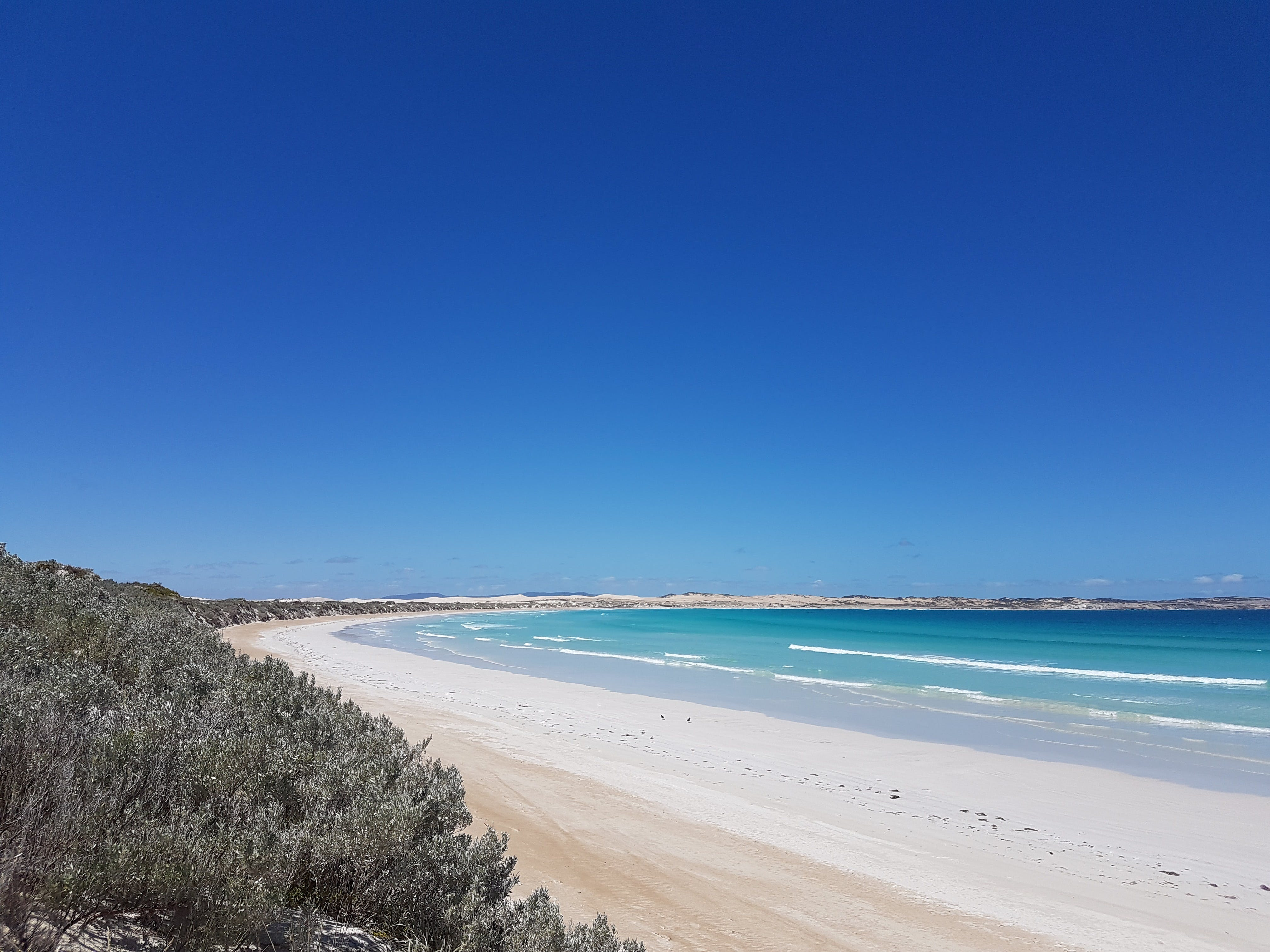 Coffin Bay National Park Campgrounds - Dalby Accommodation