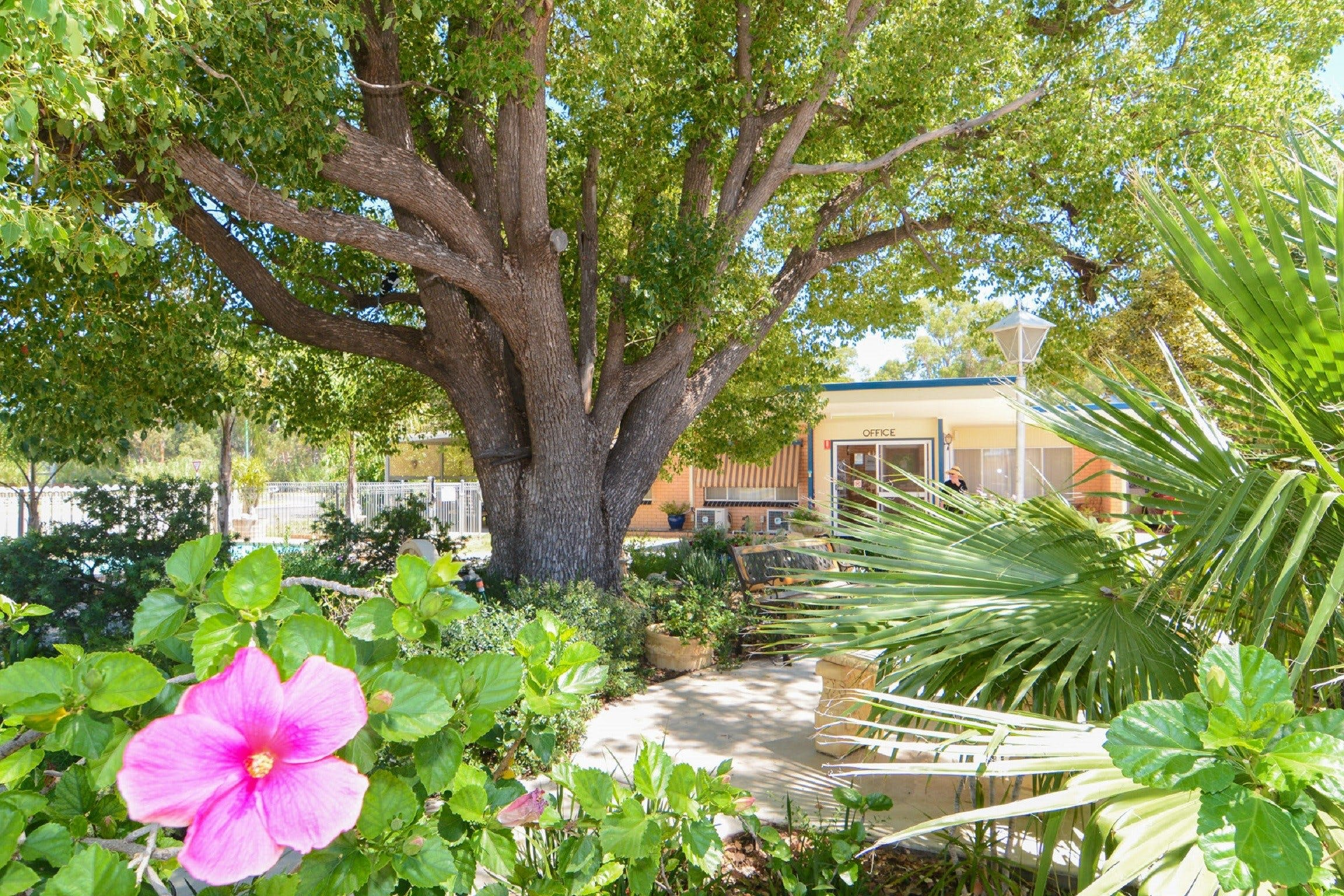 Balranald Sturt Motel - Dalby Accommodation
