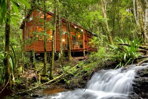The Mouses House - Rainforest Retreat - Dalby Accommodation