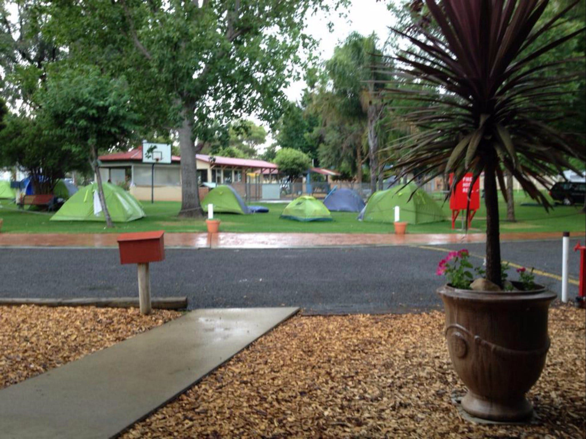 Young Caravan Tourist Park - Dalby Accommodation