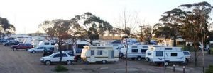 Woomera Traveller's Village and Caravan Park - Dalby Accommodation