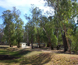 Balranald Caravan Park - Dalby Accommodation