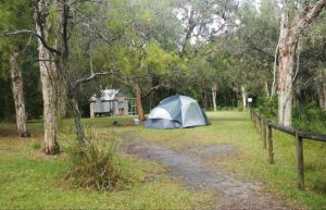 Kylies Hut walk-in campground - Dalby Accommodation