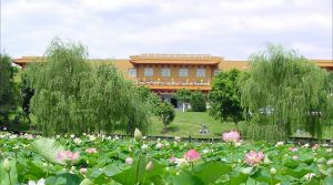Nan Tien Temple Pilgrim Lodge - Dalby Accommodation