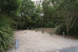 Springbrook National Park camping - Dalby Accommodation