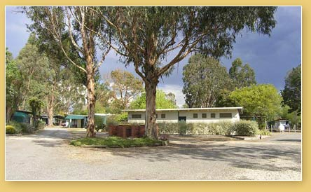 Alexandra Tourist Park - Dalby Accommodation